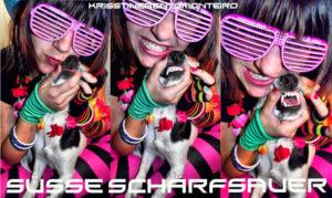 Scharf-Süsse -Sauer